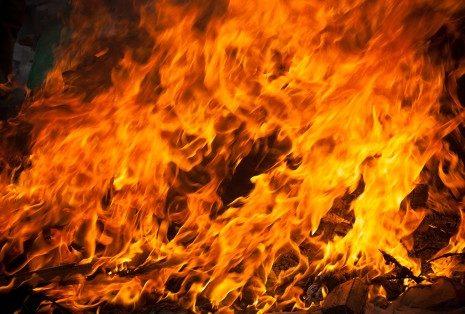 Огонь Алтаря. Palidzibas Centrs