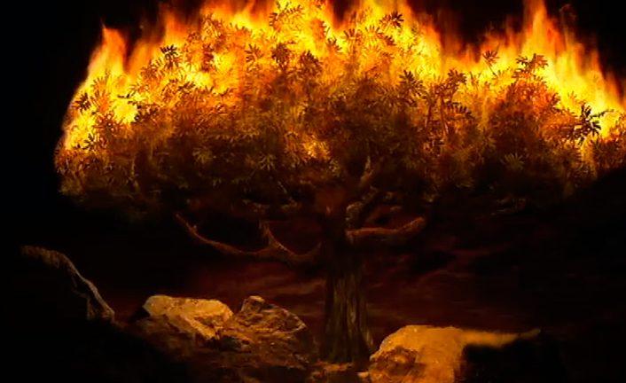 altara uguns
